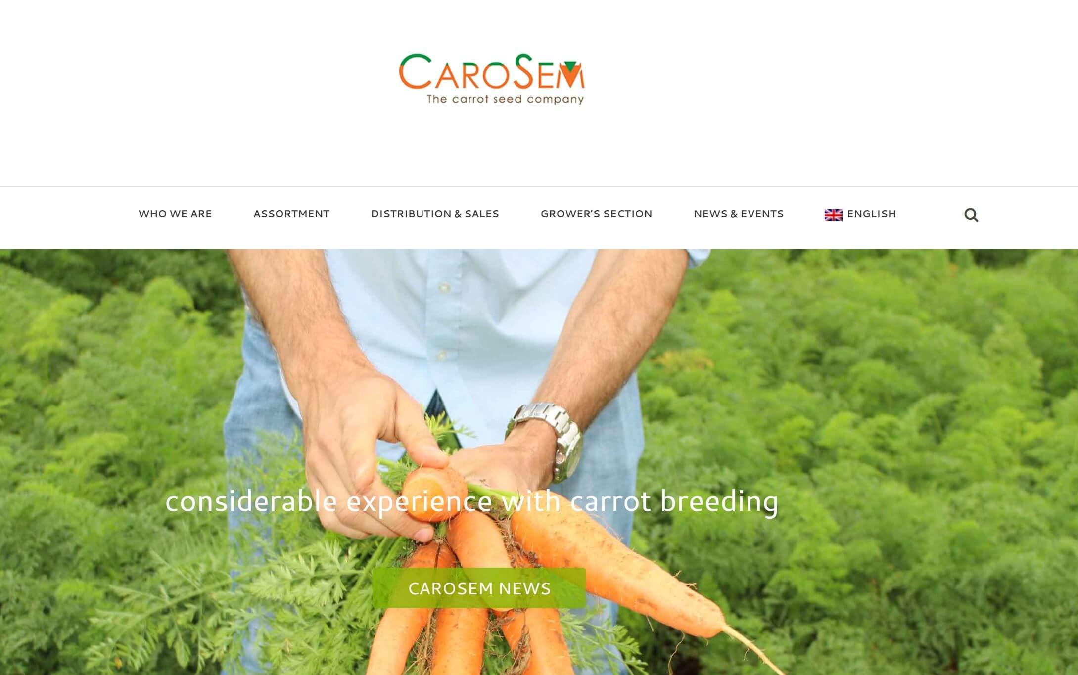 Webstránka carosem