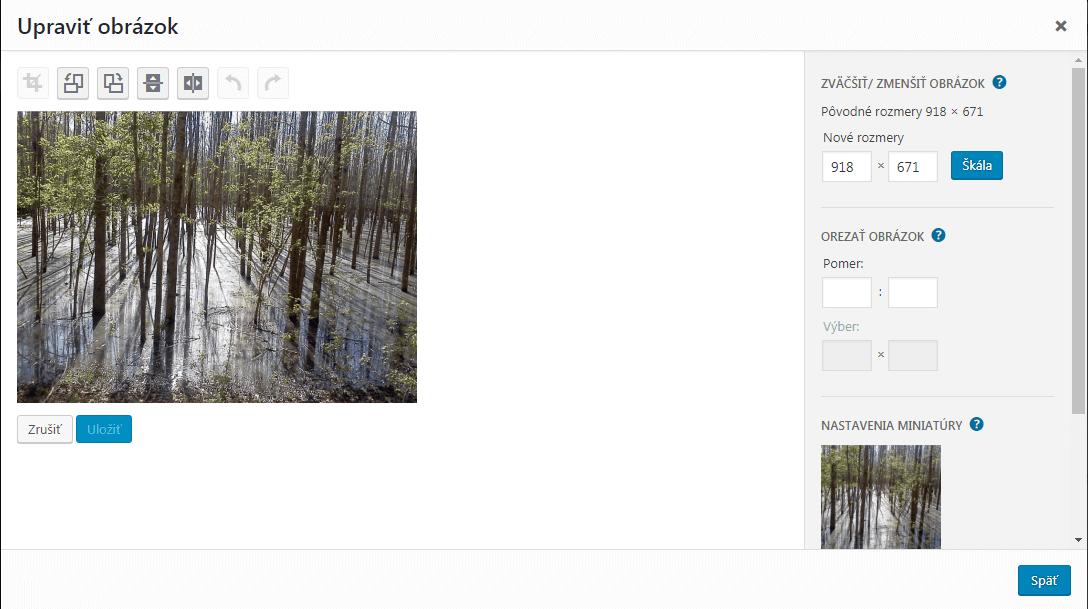 WordPress editácia obrázka
