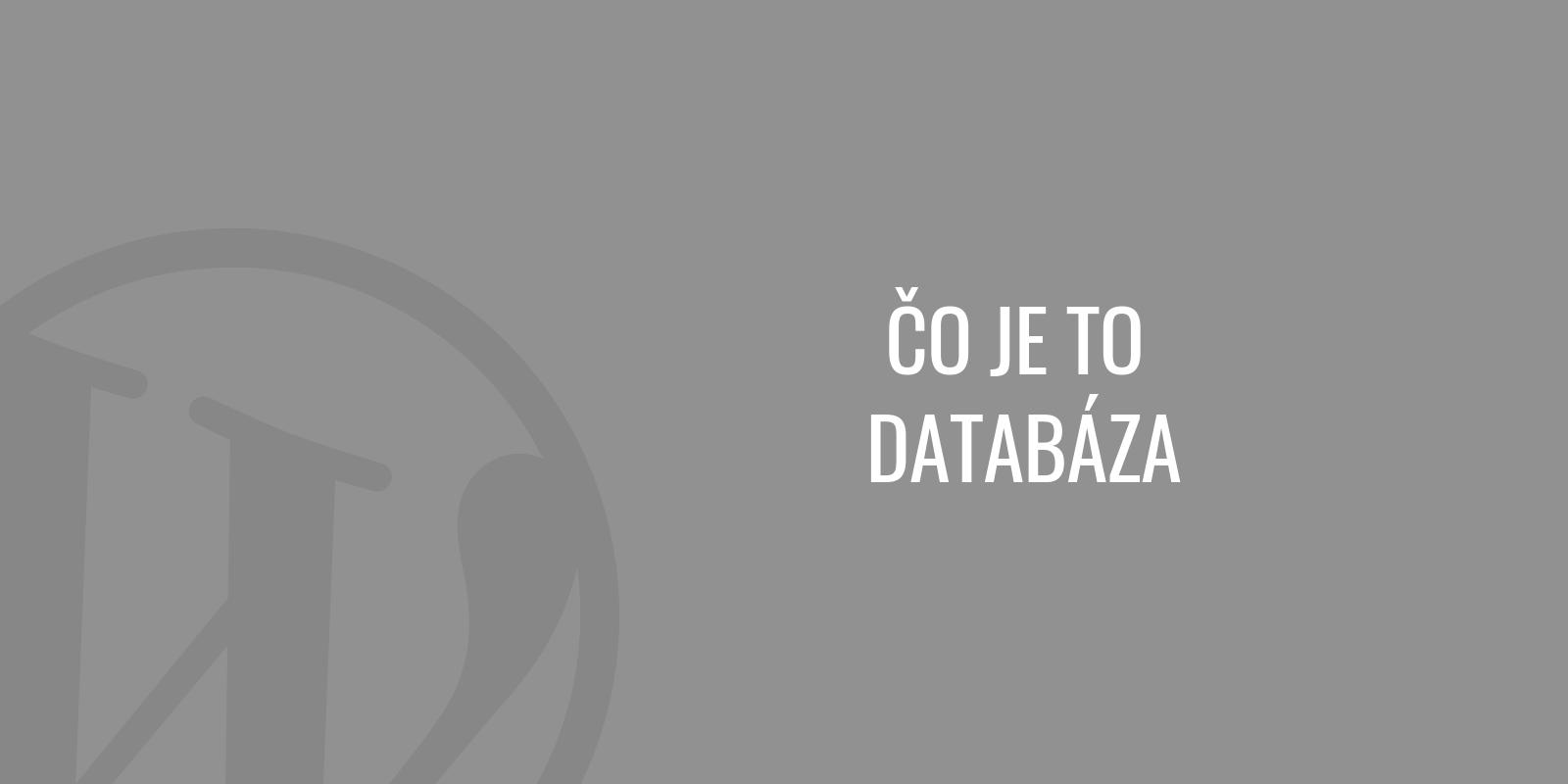 Čo je to databáza